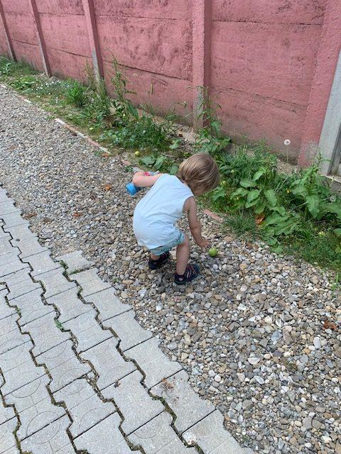 Cum a fost prima zi de grădiniță cu al doilea copil